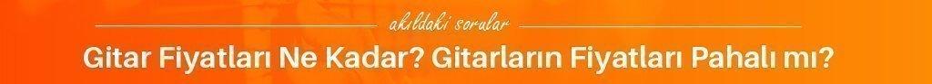 gitar fiyatlari ne kadar gitarlarin fiyatlari pahalimi - İzmir Gitar Kursu
