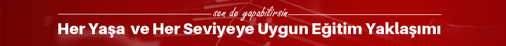 ileri seviye keman kursu egitimi - Keman Kursu İzmir