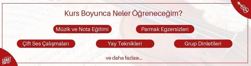 keman kursu boyunca neler ogrenecegim - Keman Kursu İzmir
